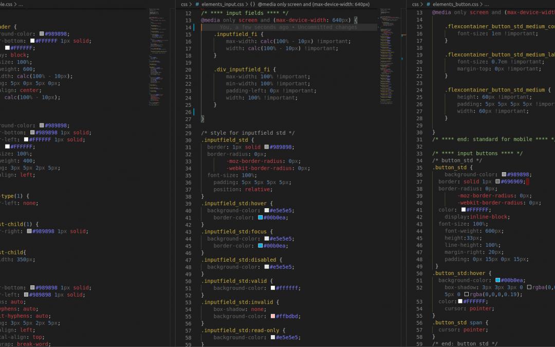 Grundlagen und Einstieg in HTML, CSS und JavaScript (JS)